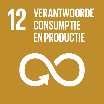 Sustainable Development Goal 12 - Verantwoorde consumptie en productie