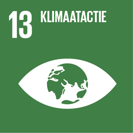 Sustainable Development Goal 13 - Klimaatactie